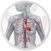 Cardiovascular System Female Round Beach Towel