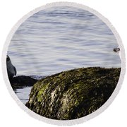 Care To Share? Round Beach Towel