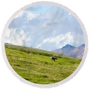 Caribou And Mount Mckinley Round Beach Towel