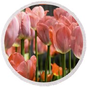Caring Pink Tulip Time Round Beach Towel