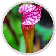 Carnivorous Plant I Round Beach Towel