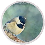 Carolina Chickadee With Decorative Frame I Round Beach Towel