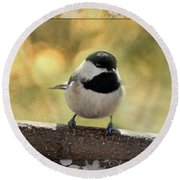 Carolina Chickadee With Decorative Frame IIi Round Beach Towel