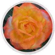 Caroty Splendor - Rose Round Beach Towel