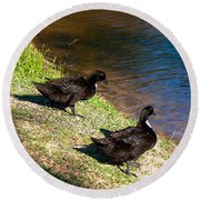 Carpenters Park-ducks Round Beach Towel