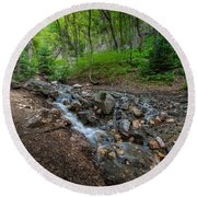 Cascades Of The Forest Round Beach Towel