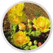Cascading Prickly Pear Blossoms Round Beach Towel