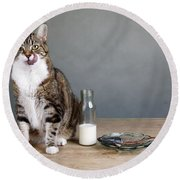 Cat And Herring Round Beach Towel