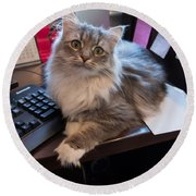Cat And Keyboard Round Beach Towel