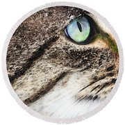 Cat Art - Looking For You Round Beach Towel by Sharon Cummings