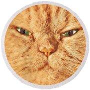 Cat Face Close Up Portrait. Painted Effect Round Beach Towel