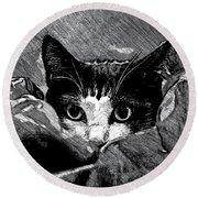 Cat In Hiding Round Beach Towel