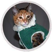 Cat In Patrick's Coat Round Beach Towel