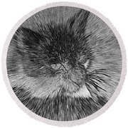 Cat - India Ink Effect Round Beach Towel