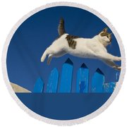 Cat Jumping A Gate Round Beach Towel