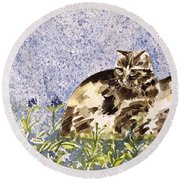 Cat Mint Wc On Paper Round Beach Towel