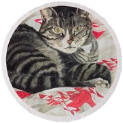 Cat On Quilt  Round Beach Towel