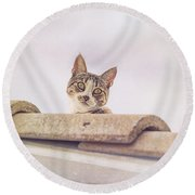 Cat On The Hot Tin Roof Round Beach Towel