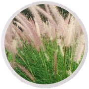 Cat Tails Round Beach Towel