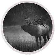 Cataloochee Bull Elk Round Beach Towel