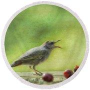 Catbird Eating Cherries Round Beach Towel