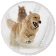 Catch Me If You Can Round Beach Towel by Vic Harris