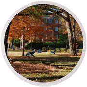 Catching Rays - Davidson College Round Beach Towel