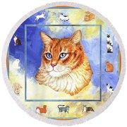 Cats Purrfection Five - Orange Tabby Round Beach Towel