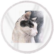 Cats View Round Beach Towel