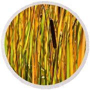 Cattails Aflame Round Beach Towel