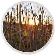 Cattails And Reeds - West Virginia Round Beach Towel