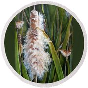 Cattails And Wrens Round Beach Towel