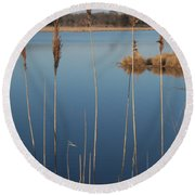 Cattails Cape May Point Nj Round Beach Towel