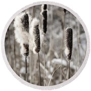 Cattails In Winter Round Beach Towel