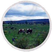 Cattle At Pasture Round Beach Towel