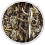 Cattle Skulls On Display In Santa Fe Round Beach Towel