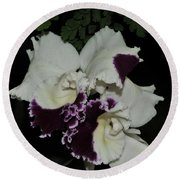 Cattleya Moscombe 'the King'  3 Of 3 Round Beach Towel