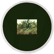 Catus 1 Round Beach Towel