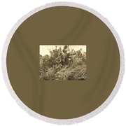 Catus 3 Round Beach Towel