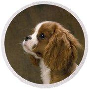 Cavalier King Charles Spaniel Dog Round Beach Towel