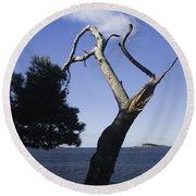 Cavtat Tree Round Beach Towel