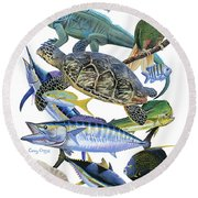 Cayman Collage Round Beach Towel