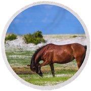 Cedar Island Wild Mustangs 59 Round Beach Towel