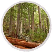 Cedar Logs At Garibaldi Round Beach Towel
