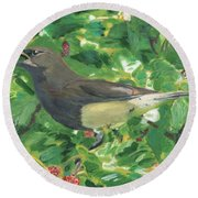 Cedar Waxwing Eating Mulberry Round Beach Towel