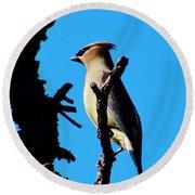 Cedar Waxwing In Tree 030515aaa Round Beach Towel