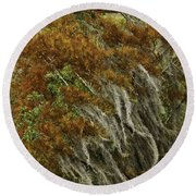 Cedars In The Fall Round Beach Towel