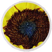 Center Of A Sunflower Round Beach Towel