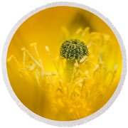 Center Of A Yellow Cactus Flower Round Beach Towel