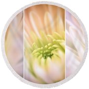 Center Of Attention Round Beach Towel